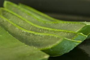 Aloe Vera Bio Saft - 1 Liter